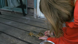 Chipmunk Eating From a Girl's Hand Live Action
