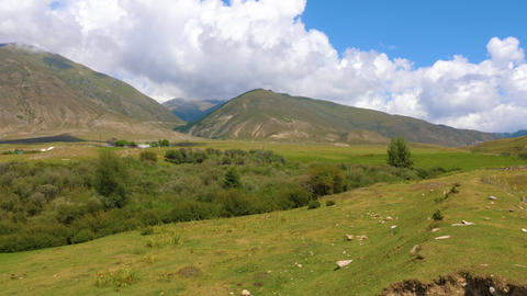 Panoramic view of summer landscape with mountains and meadow Footage