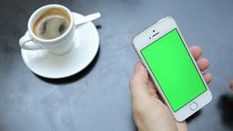 녹색 화면・알파