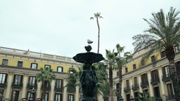 Seagull is Sitting on The Fountain Place Reial Footage