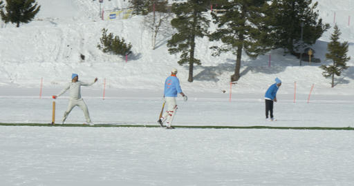 cricket on ice bowling Footage