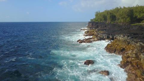 Coastline of Hawaii Archivo