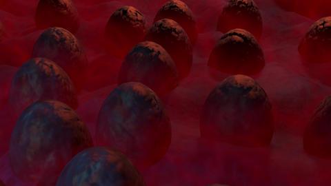 [alt video] Alien eggs in mist. 3d animation