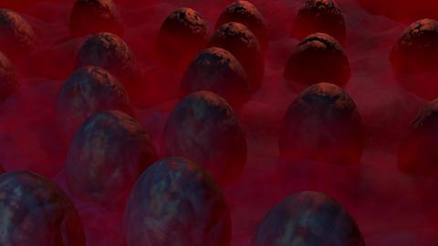 Alien eggs in mist. 3d animation Stock Video Footage