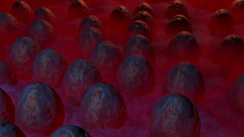 Alien eggs in mist. 3d animation Animation