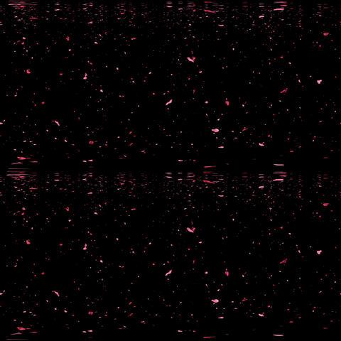 Petals VR 360° Video