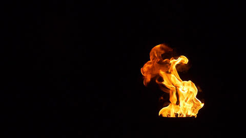 Flame of fire on a black background Slowly rising flames Live Action