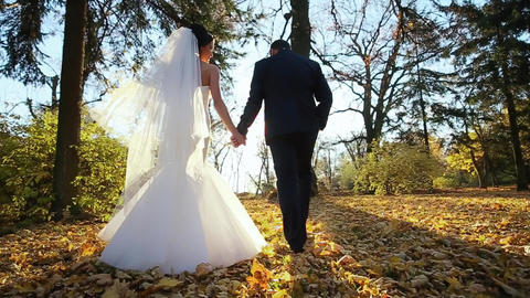 Wedding Couple Walking Pair Sunlight stock footage