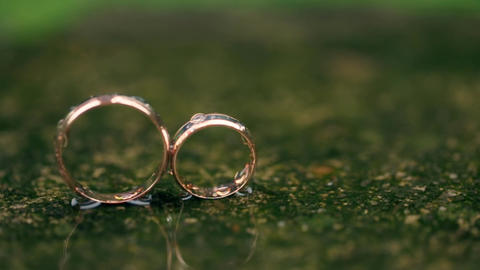 Gold Rings are the Green Rain Falls Live Action