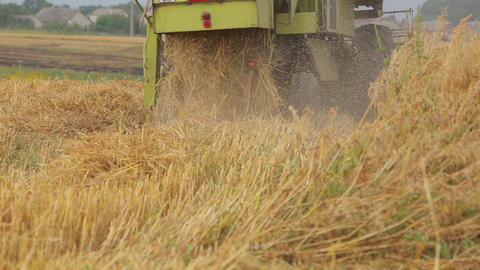 Combine mows green box cereals Live Action