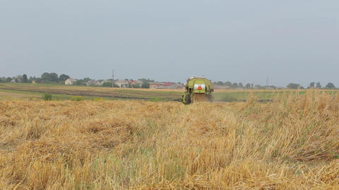 Combine mows green box cereals in cloudy weather Live Action