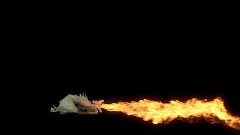Realistic Dragon flying and breathing fire. Looped clip with alpha channel Animation