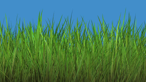 Grass dying Animation