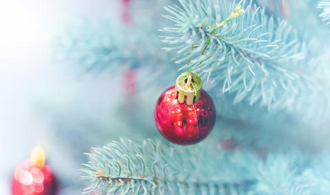 Christmas tree toys decorations and snow-covered Christmas tree branches Photo