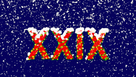 New Year text Roman numerals XXIX. Snow falls. Christmas mood, looped video. Animation