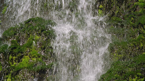 Waterfall in the forest. Summer weather, taiga nature, Russia, Siberia Live Action