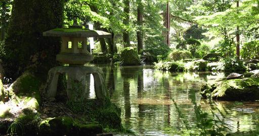 Gifu park japanese garden Live Action