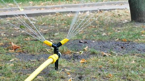 Yellow black watering lawn sprinkler system sprays water GIF