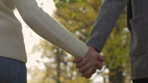 Devoted couple in relationship holding hands and walking autumn park together Footage