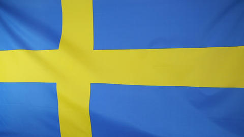 National flag of Sweden Footage