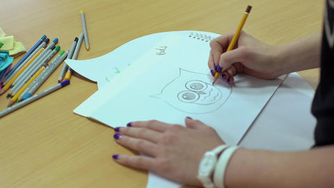 Drawing Owl In The Studio Of The Artist stock footage