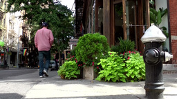 New York City 729 downtown footpath with plants and hydrant Footage