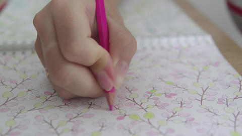 Color video of a woman hand holding a pencil and coloring an adult coloring book Live Action