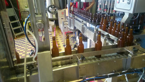 Beer bottles sorted on conveyor belt at alcoholic beverage factory, production Live Action