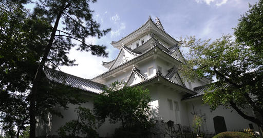 Ogaki castle (castle tower) Live Action