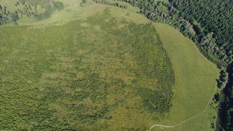 Summer field aerial view ビデオ