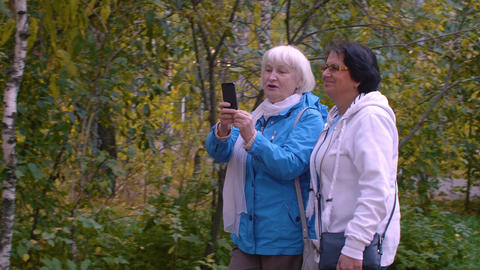 Happy active seniors walking and photographing on phone in autumn park Footage
