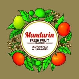 mandarin vector frame Vector