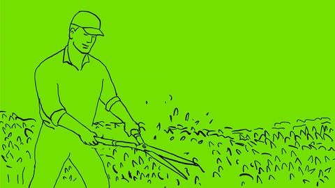 Gardener Trimming Hedge Drawing 2D Animation Animation