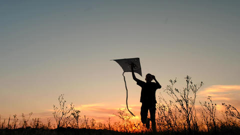 Happy boy with flying kite in a field at sunset Footage