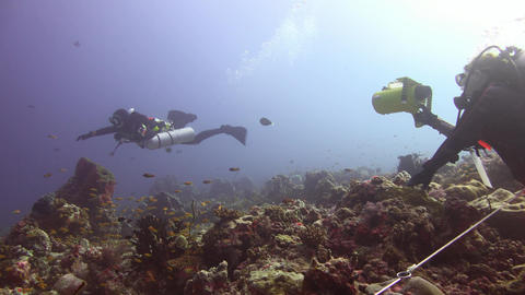 Underwater diving in the Maldives is often accompanied by strong currents Footage