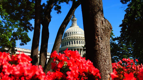 WASHINGTON, DC, USA, The U S Capitol,often called the…, Live Action