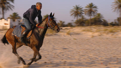 Monastir, Tunisia - 09 June 2018. Rider galloping on horse at sand in summer day GIF