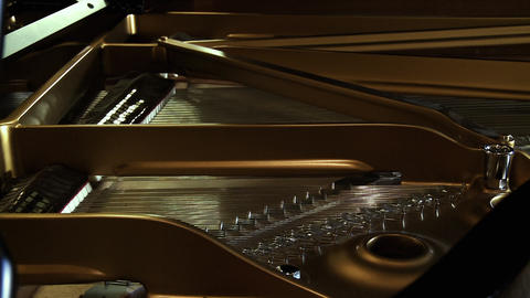 Inside An Old Classical Piano Live Action
