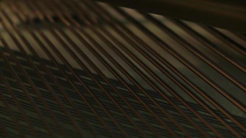 Vibrating Piano Strings. Close-Up ビデオ