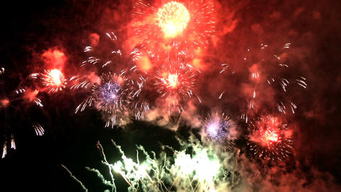 Colorful Celebrate Firework Live Action