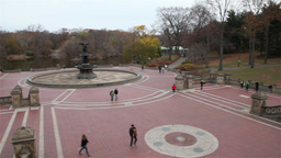 Central Park in New York Footage