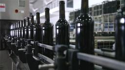 wine bottles in the bottling line conveyor belt, slider shot Footage
