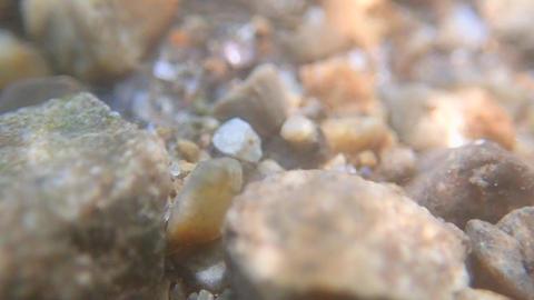 River bottom underwater Footage