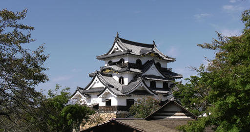 Hikone castle Live Action