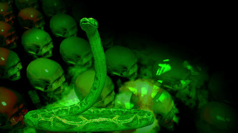 animation of people's skull and snakes in front of screen Stock Video Footage