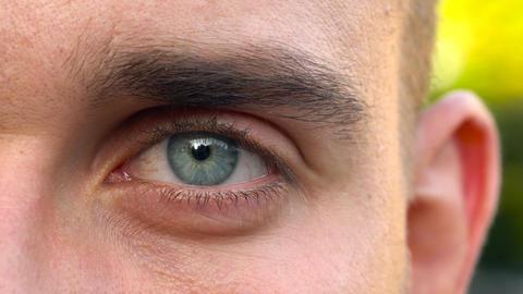 Beautiful blinking male eye close-up 영상물
