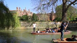 Punts on the River Cam Cambridge Cambridgeshire UK 13 GIF