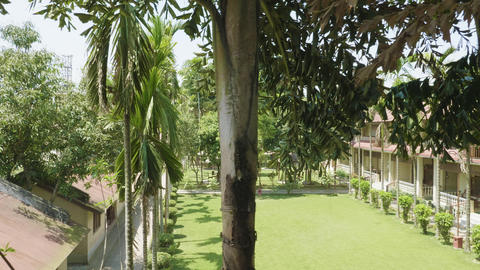 Green courtyard of the hotel in asia. Village in Chitwan national park, Nepal 영상물