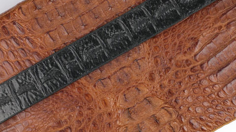 Rotation, close-up of a black strip of skin lying on a brown crocodile skin Live Action