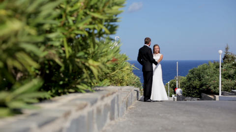 Happy newlyweds are walking on the coast in a park near the green bushes Footage